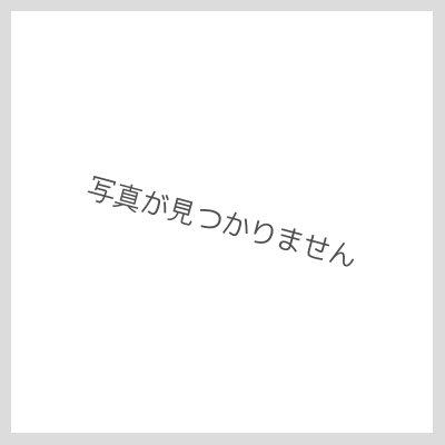 画像2: レフア・ヘアクリップ【赤】