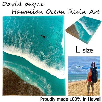 画像1: デイヴィッドペイン ハワイアン レジン アート Lサイズ