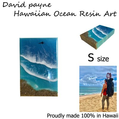 画像1: デイヴィッドペイン ハワイアン レジン アート Sサイズ