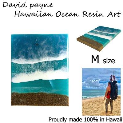 画像1: デイヴィッドペイン ハワイアン レジン アート Mサイズ