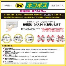 画像7: フライスTシャツ≪ホワイトジンジャーレイ/白×ベージュ≫≪ネコポス対応可≫ (7)
