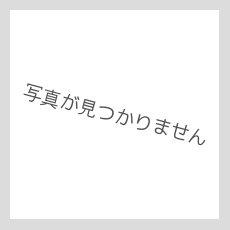 画像5: スリムフィット 7分袖 Tシャツ カラフルパイナップル柄 ネコポス対応可 (5)