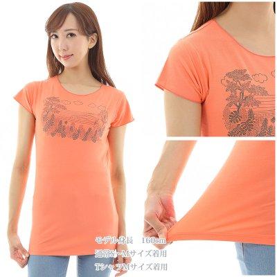 画像3: 売り切りSALE スリムフィット フレンチスリーブ Tシャツ パーフェクトウェーブス柄 ネコポス対応可