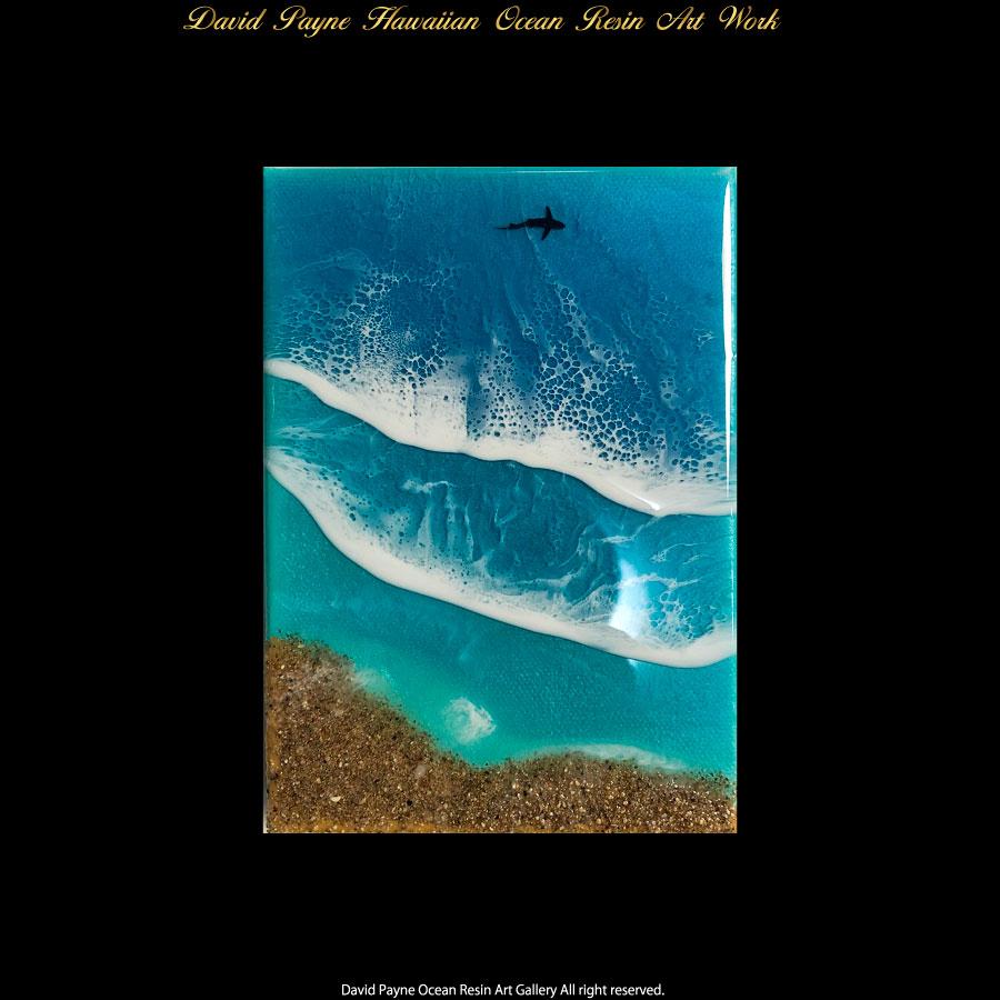 画像1: デイヴィッドペイン ハワイアン レジン アート Sサイズ (1)