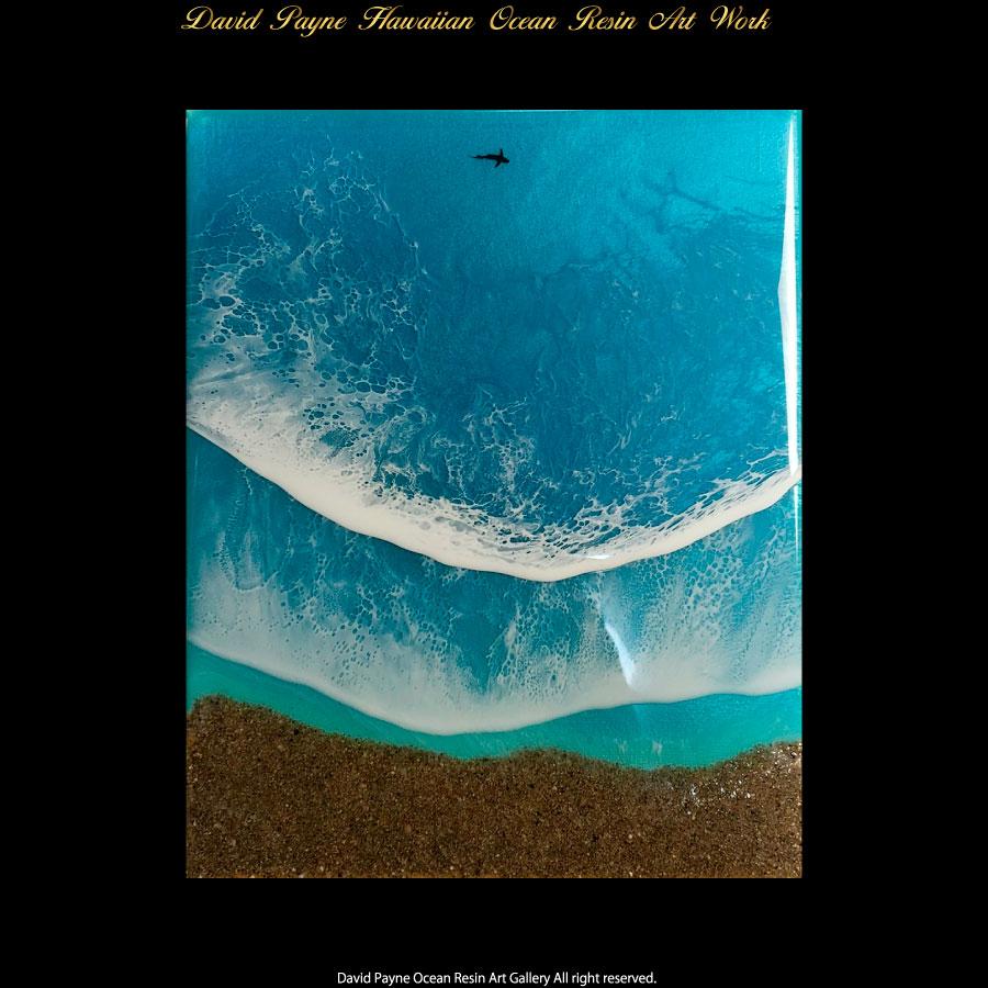画像1: デイヴィッドペイン ハワイアン レジン アート Mサイズ (1)